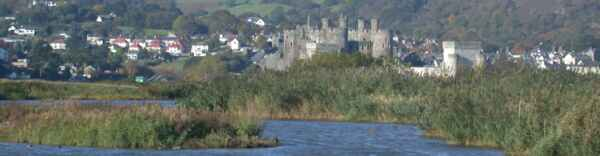 RSPB Conway, with Conway Castle as a backdrop (pic: Andy Mabbett)